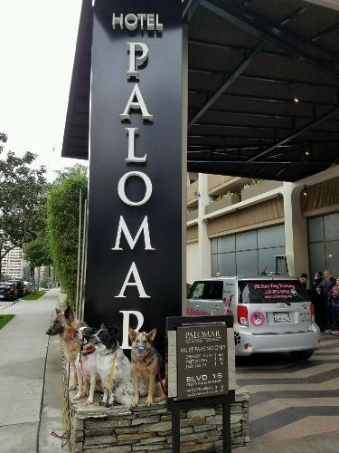 Los Angeles Hotels Hotel Palomar Westwood Hotels Com