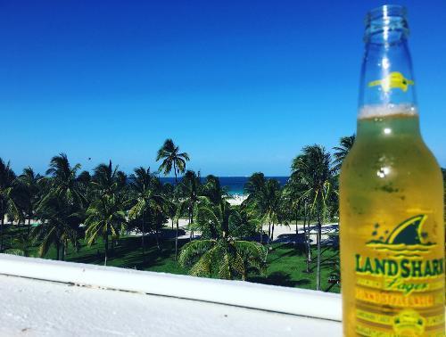 Marriott Vacation Club South Beach Miami Beach Florida United States